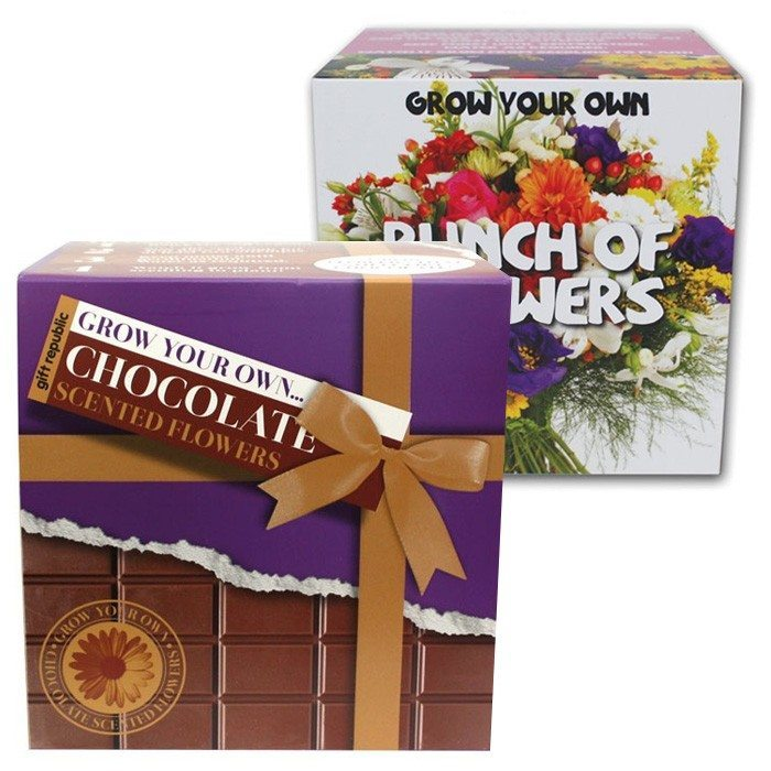 Bouquet de fleurs sauvages ou au chocolat original grow your own - Fleur a faire soi meme ...