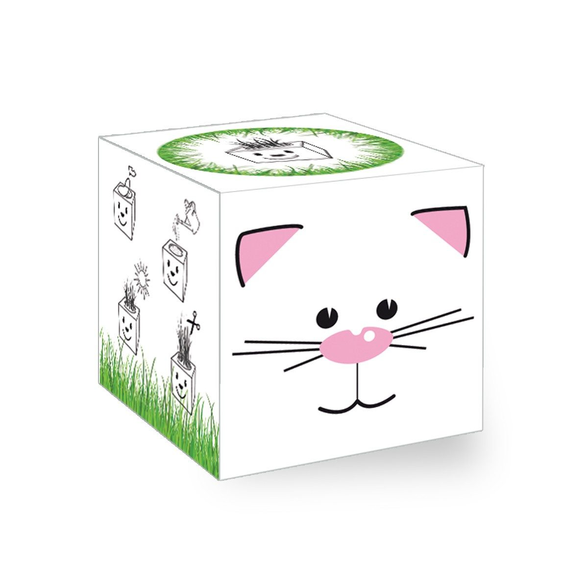 Cube de gazon - chat