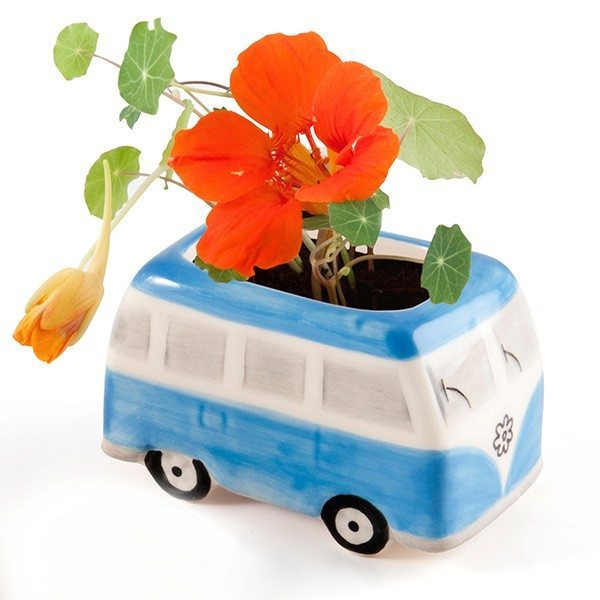 Mini bus « Flower Power » Capucine