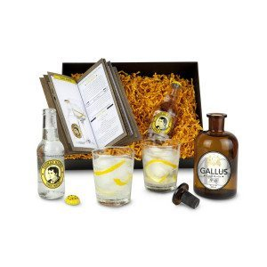 Coffret Gin Gallus Gold - articles