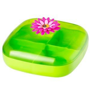 Lunchbox « Printemps »