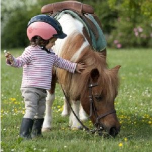 Un enfant carresse un poney